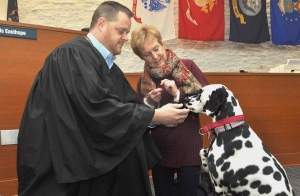 Dog days: Dalmatian provides support for veterans